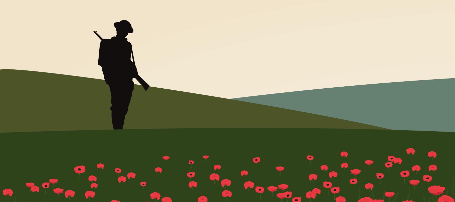 lonely soldier in poppy field